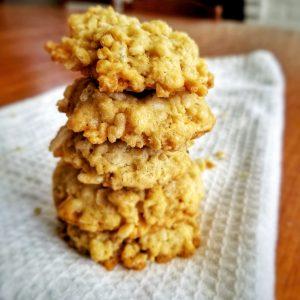 Stack of Oat Cookies